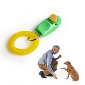 Best Dog Training Clicker