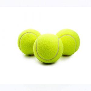 Dog Tennis Ball