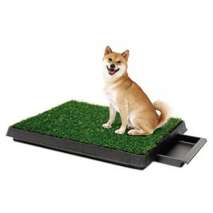 Indoor Turf Dog Potty