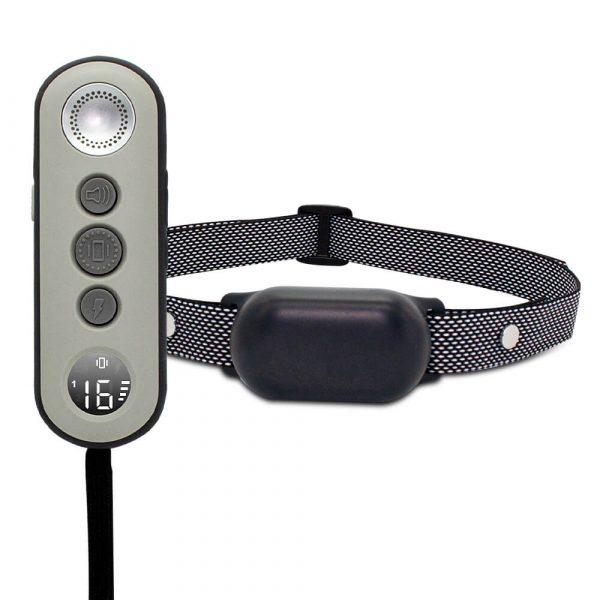 dog training shock collar
