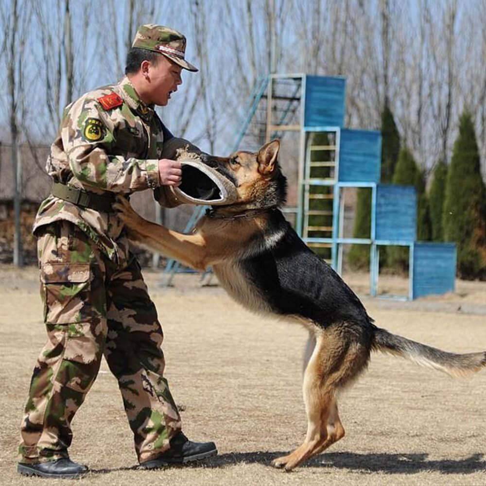 military dog bite sleeve