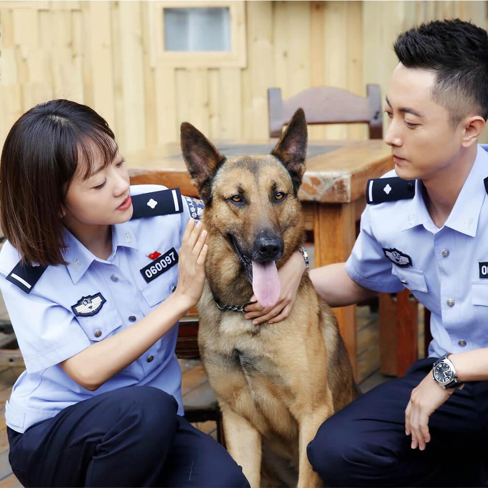 military dog bite suit