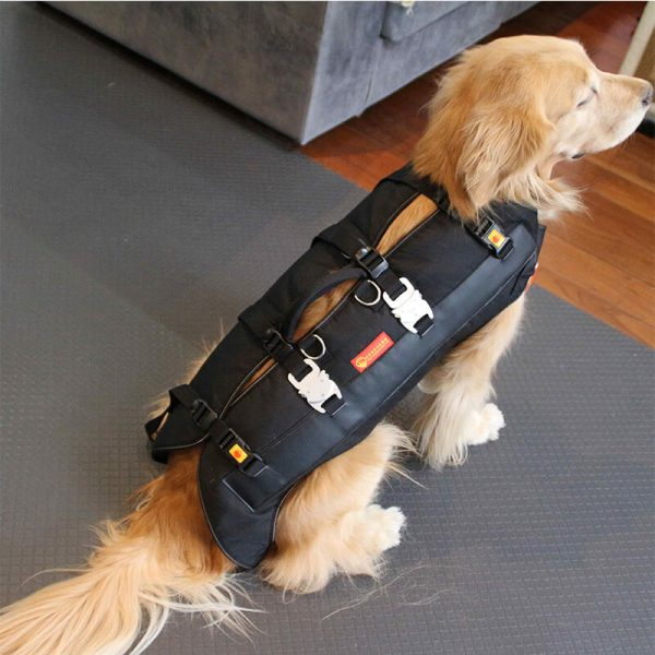 outdoor dog carriers