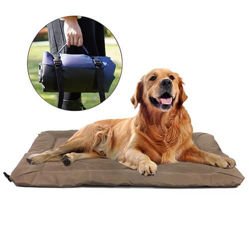 dog travel mat