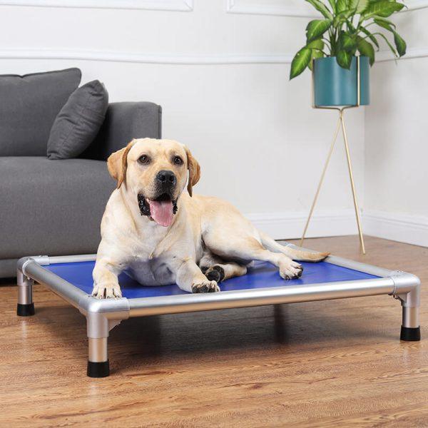 Aluminum Elevated Dog Bed