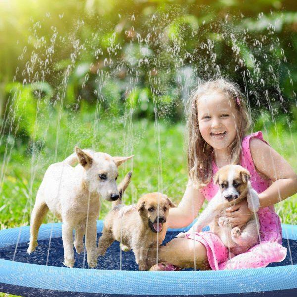 dog splash mat