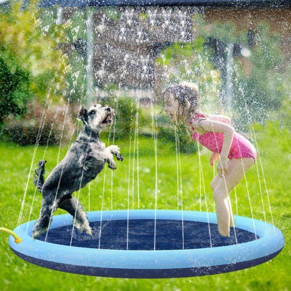 dog splash pool